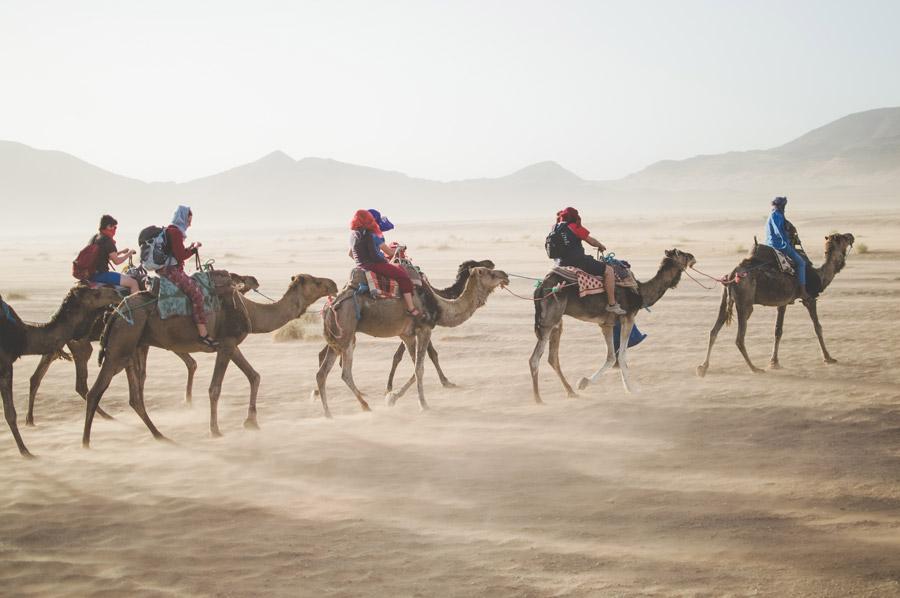 フリー写真 サハラ砂漠をラクダに乗って渡る人々