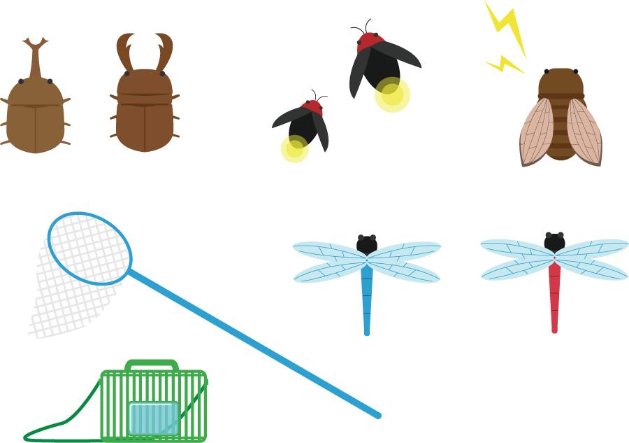 フリーイラスト 夏の虫と虫取り網と虫かご