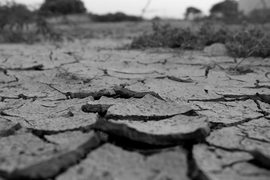 フリー写真 乾燥してひび割れた大地