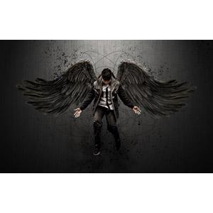 フリー写真, フォトレタッチ, 人物, 男性, 堕天使, 羽(翼)