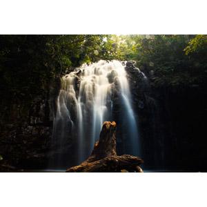 フリー写真, 風景, 自然, 滝, 倒木, オーストラリアの風景