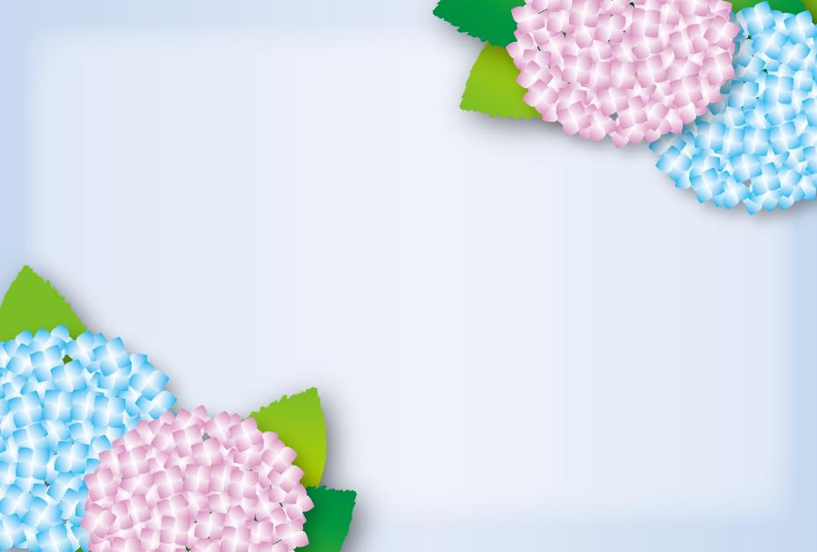 フリーイラスト 二色のあじさいの花の飾り枠