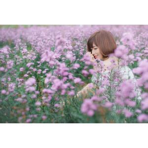 フリー写真, 人物, 女性, アジア人女性, 女性(00201), ベトナム人, ショートヘア, 人と花, 花畑