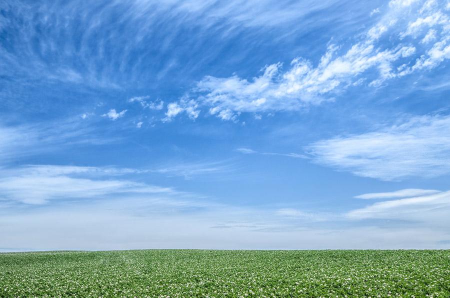 フリー写真 北海道の草原と青空の風景