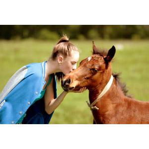 フリー写真, 人物, 少女, 外国の少女, ルーマニア人, 人と動物, 動物, 哺乳類, 馬(ウマ), 子供(動物), キス(口づけ)