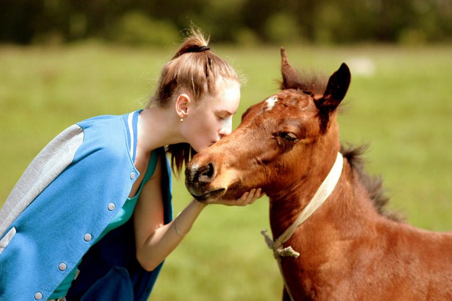 フリー写真 仔馬にキスをする外国の少女