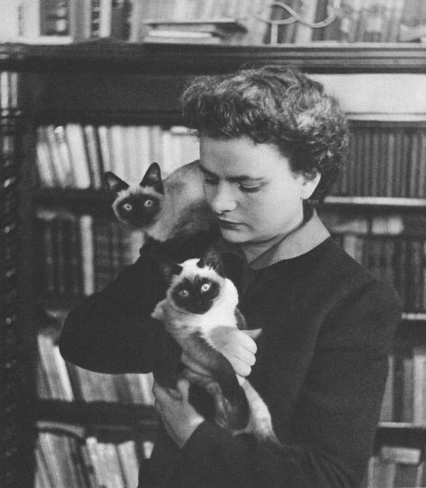 フリー写真 シャム猫と小説家のエルサ・モランテ