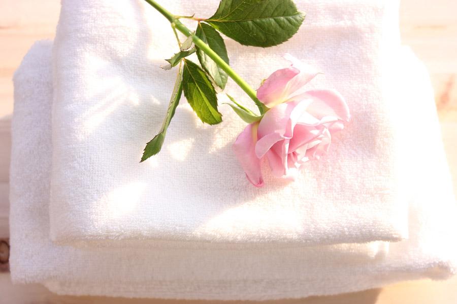 フリー写真 タオルの上に置かれたバラの花