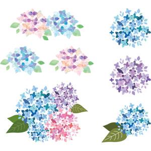 フリーイラスト, ベクター画像, AI, 植物, 花, 紫陽花(アジサイ), 梅雨, 6月