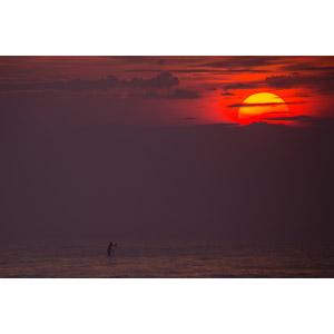 フリー写真, 風景, 海, 夕暮れ(夕方), 夕焼け, 夕日, スポーツ, ウォータースポーツ, スタンドアップパドル・サーフィン