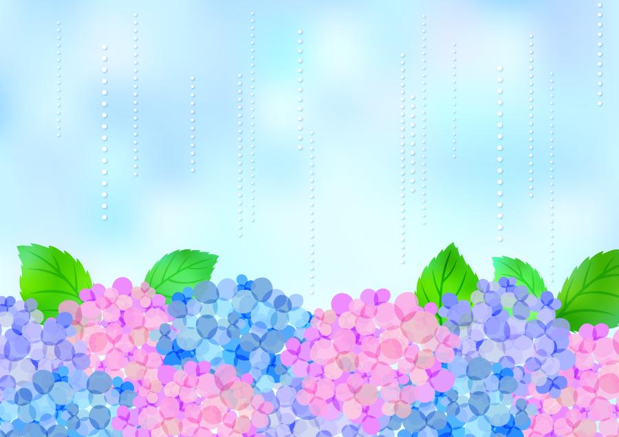 フリーイラスト 雨とあじさいの花の梅雨の背景