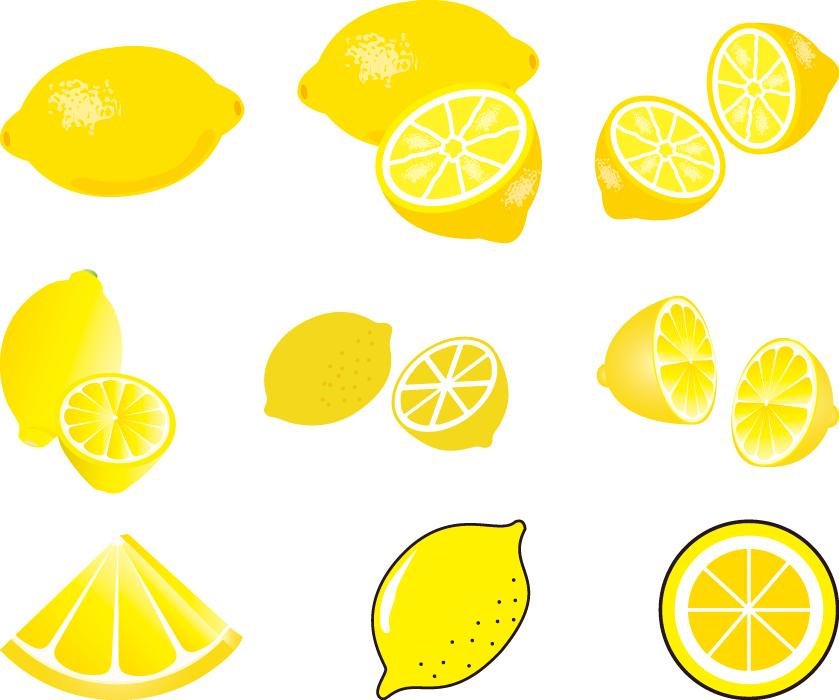 フリーイラスト 9種類のレモンのセット