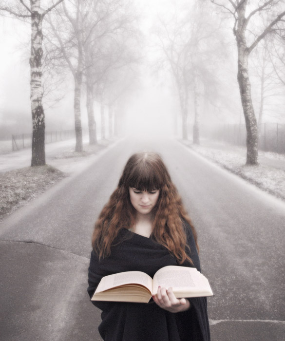 フリー写真 本を読む女性と霧に包まれる並木道