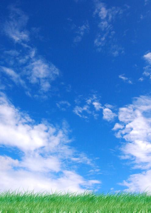 フリー写真 青い空と緑の草の風景