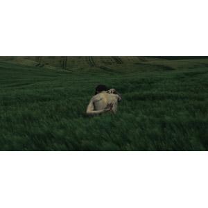フリー写真, 人物, 男性, 後ろ姿, 背中, 人と風景, 牧草地, 草原