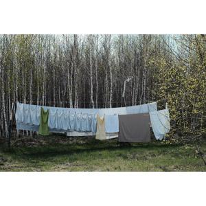 フリー写真, 風景, 森林, 樹木, 洗濯物, 洗濯