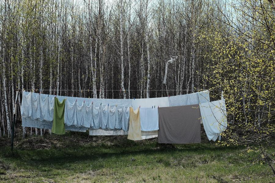 フリー写真 木々と干された洗濯物の風景