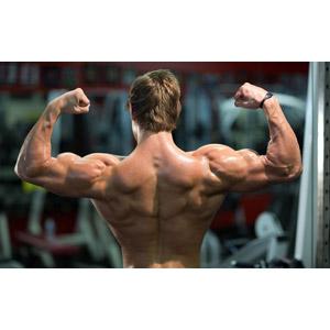 フリー写真, 人物, 男性, 外国人男性, 後ろ姿, 筋肉, 力こぶ, ボディビルディング, ボディビルダー, スポーツ