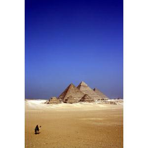 フリー写真, 風景, 建造物, 建築物, ピラミッド, ギザのピラミッド, 砂漠, ラクダ, 世界遺産, エジプトの風景, 人と動物, 眺める, 青空