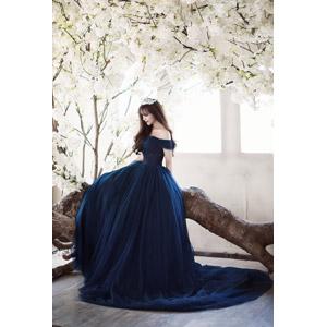 フリー写真, 人物, 女性, アジア人女性, 女性(00204), ベトナム人, ドレス, 倒木, 座る(木), 人と花