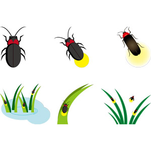 フリーイラスト, ベクター画像, AI, 動物, 昆虫, 蛍(ホタル), 夏