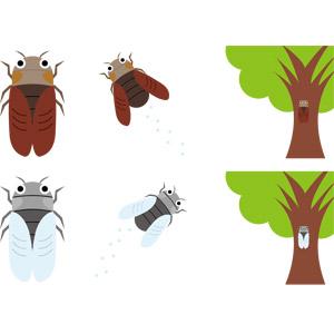 フリーイラスト, ベクター画像, AI, 動物, 昆虫, 蝉(セミ), 夏