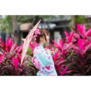 フリー写真, 人物, 女性, アジア人女性, 欣欣(00001), 中国人, 和服, 浴衣, 日傘, 横顔