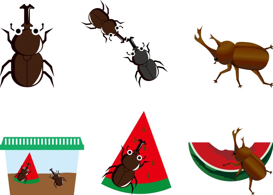 フリーイラスト 6種類のカブトムシのセット