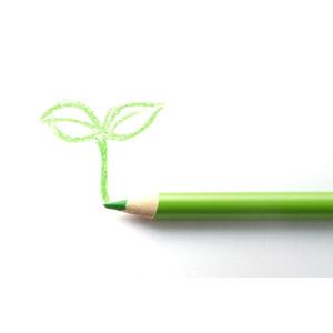 フリー写真, 画材, 色鉛筆, 新芽, エコロジー