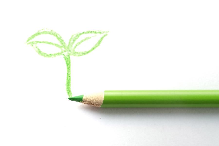 フリー写真 色鉛筆と描かれた新芽