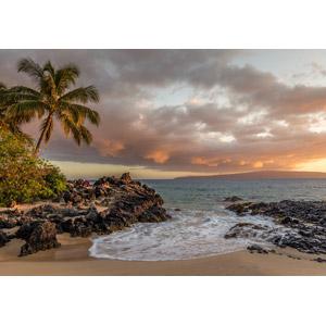 フリー写真, 風景, 自然, ビーチ(砂浜), 海, 夕暮れ(夕方), 椰子(ヤシ), 南国, アメリカの風景, ハワイ州