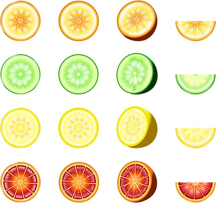 フリーイラスト オレンジとライムとレモンとブラッドオレンジのセット