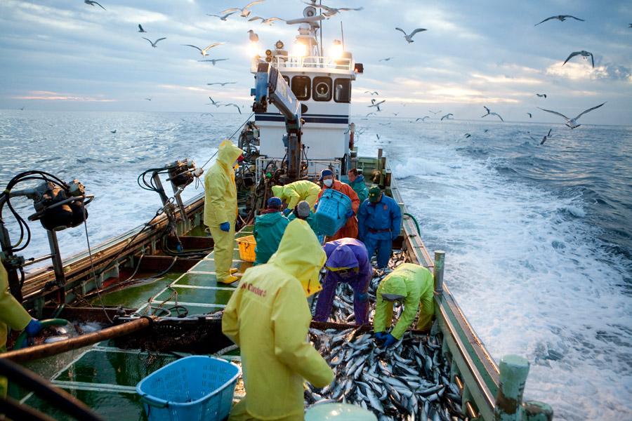 フリー写真 漁船の上で漁が行われている様子