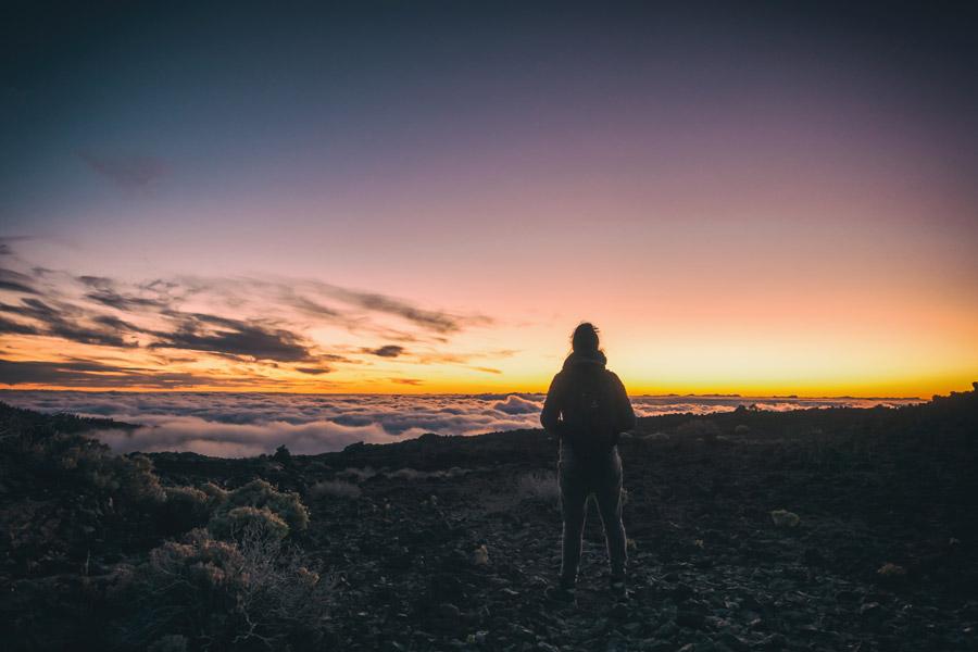 フリー写真 山の頂上から雲海と朝焼けを眺める女性の後ろ姿