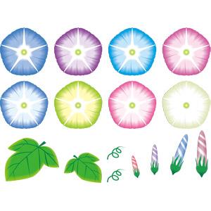 フリーイラスト, ベクター画像, AI, 植物, 花, 朝顔(アサガオ), 蕾(つぼみ), 葉っぱ