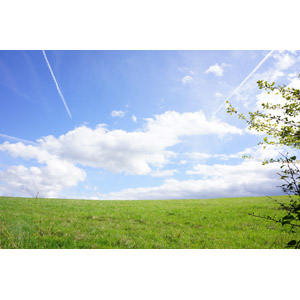 フリー写真, 風景, 自然, 草原, 青空, 雲, 飛行機雲