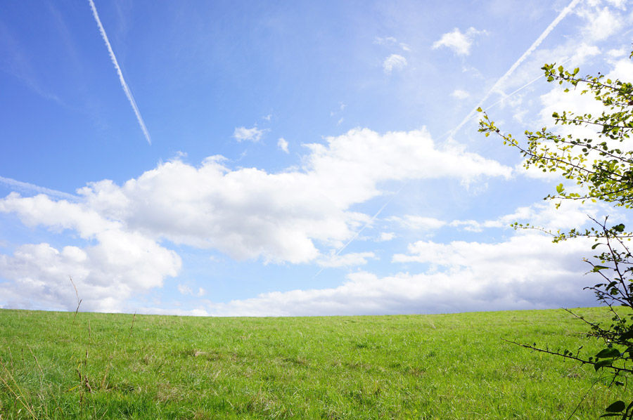 フリー写真 草原と青空と飛行機雲の風景