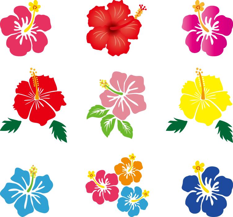 フリーイラスト 9種類のハイビスカスの花のセット