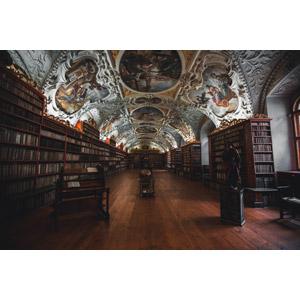 フリー写真, 風景, 建造物, 建築物, 図書館, 本棚, フレスコ画, チェコの風景, プラハ, 彫像