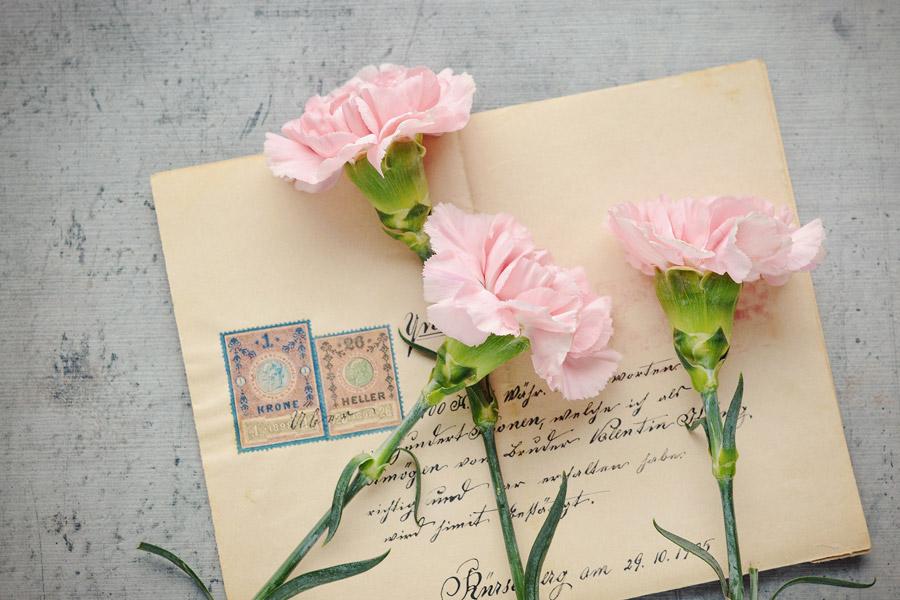 フリー写真 古い手紙とカーネーションの花