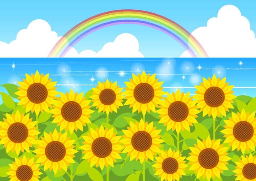 フリーイラスト ひまわりの花と虹の架かる夏の海