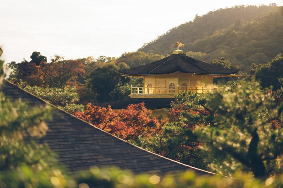 フリー写真 高台から見る金閣寺の風景
