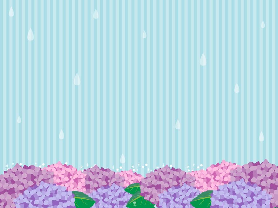 フリーイラスト アジサイの花と雨とストライプ柄の背景