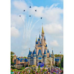 フリー写真, 風景, 建造物, 建築物, 城, シンデレラ城, ディズニーパーク, 遊園地(テーマパーク), アメリカの風景, フロリダ州, ブルーエンジェルス, 航空機, 飛行機