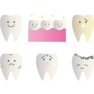 フリーイラスト, ベクター画像, AI, 人体, 歯, 虫歯, デンタルケア
