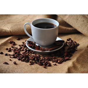 フリー写真, 飲み物(飲料), コーヒー(珈琲), コーヒーカップ, コーヒー豆