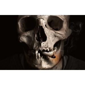フリー写真, 人体, 頭蓋骨(髑髏), 骸骨, 煙草(タバコ)