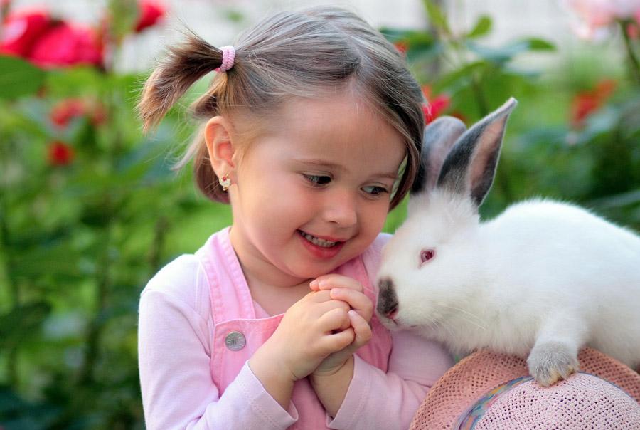 フリー写真 ウサギのかわいさにメロメロの女の子