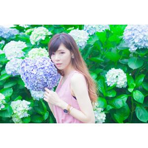 フリー写真, 人物, 女性, アジア人女性, DUDU(00216), 中国人, 人と花, 花, 花畑, 紫陽花(アジサイ)