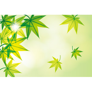 フリーイラスト, ベクター画像, EPS, 背景, 植物, 葉っぱ, もみじ(カエデ), 緑色(グリーン), 太陽光(日光)